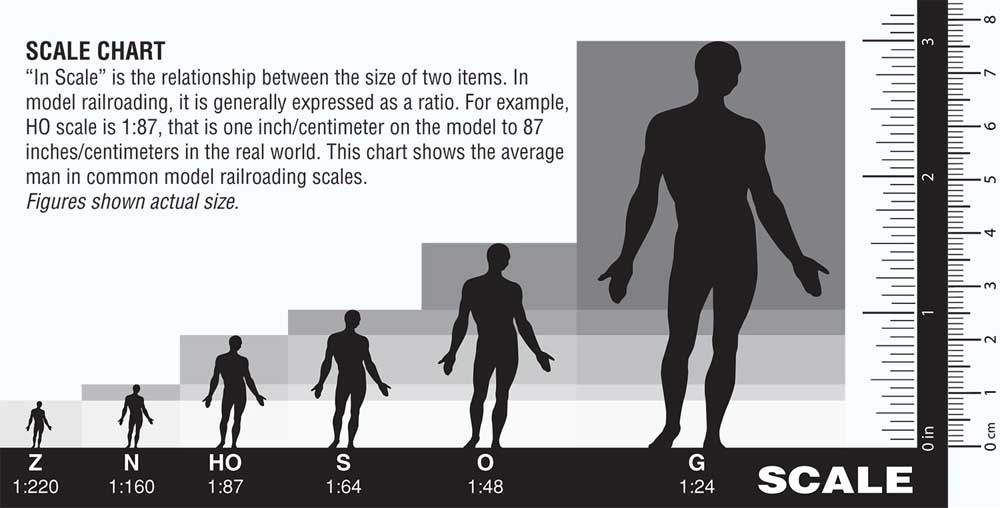 Taille des figurines selon leur échelle