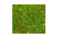 Heki 30801 - 2 tapis prairie 40 X 25 cm x 1 mm