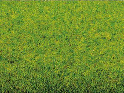Végétation miniature : Tapis d'herbe printemps 200 x 100 cm - Noch 00010
