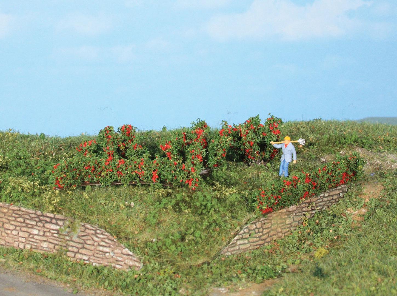 Végétation miniature : Haies et buissons de roses 0,7 - 3 cm - Heki 19125