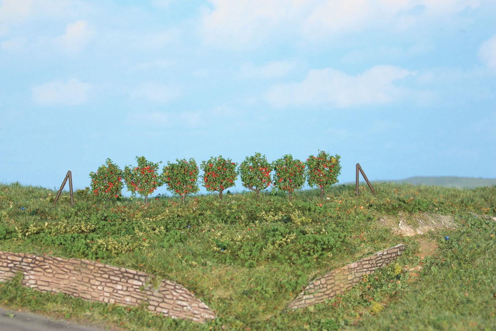 Végétation miniature : Espaliers 2,5 cm - Heki 19135