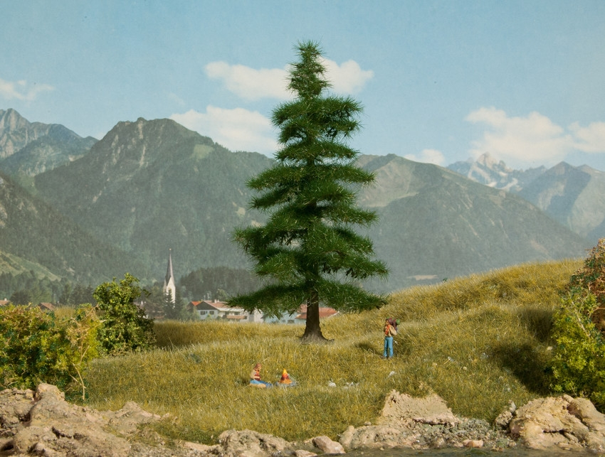 Végétation miniature : Sapin Nordmann miniature 12 cm - 1:87, 1:120, 1:160 - Noch 21810