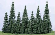 Heki 2180 - 30 sapins 3 à 7 cm