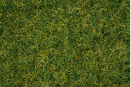 Noch 7072 - Herbe pour Grasmaster
