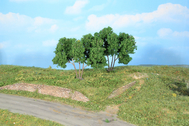 Végétation miniature : Charmes 9 cm - Heki 19113