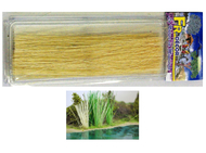 Roseaux longs jaunes 20 cm