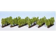 Végétation miniature : Vignes 1,6 cm 1:160 - 1:220 - Noch 21545