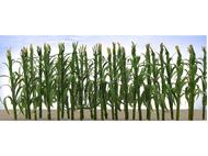 Végétation miniature : Tiges de maïs - HO - JTT 95511