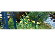 Végétation miniature : Tournesols - HO - JTT 95523