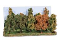Heki 2000 : 10 arbres d'automne 10 - 14 cm