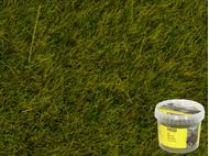 Noch 7090 - Herbes sauvages Pré, 6 mm