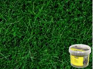 Noch 7094 - Herbes sauvages vert foncé, 6 mm