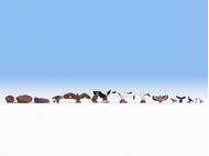 Oiseaux miniatures 1:87, HO - Noch 15775