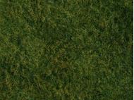 Végétation miniature : Flocage vert clair herbes sauvages 20 x 23 cm - Noch 07280