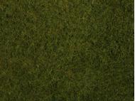 Végétation miniature : Flocage vert olive herbes sauvages 20 x 23 cm - Noch 07282