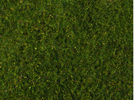 Végétation miniature : Flocage vert moyen 20 x 23 cm - Noch 07291