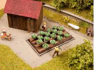 Vagétations miniatures : 16 plants de chou blanc 3 cm x 6 cm - 1/87 HO - Noch 13217