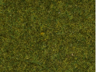 """Végétation miniature : Herbe sauvage """"Prairie"""" - 0, HO, TT - Noch 07117 7117 - diorama.fr"""
