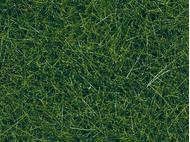 Végétation miniature : Herbes sauvages vertes foncées - Noch 07120 7120