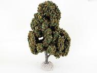 Chêne automne - arbre miniature naturel 18 cm - FR55691
