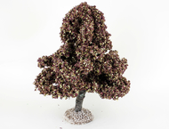 Châtaignier automne - arbre miniature naturel 18 cm - FR