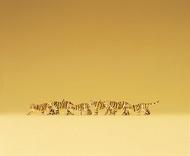 Preiser 79714 - Tigres miniatures 1:160