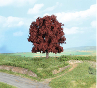 Végétation miniature - 1 Hêtre commun 16 cm - Heki 01788
