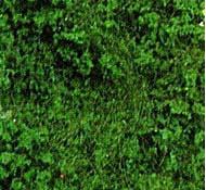 Heki 1563 - Flocage d'arbres et buissons. Sac de 200 ml. Feuillage vert