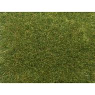 Végétation miniature : Herbes sauvages vert moyen - 50 g - Noch 07118