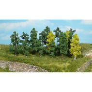 Heki 1231 : 25 arbres 4-6cm