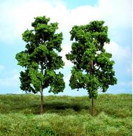 Végétation miniature : Hêtres 18 cm - Heki 1912 01912