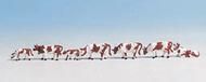 Noch 36723 - Vaches blanches et brunes 1:160