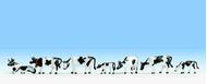 Noch 36721 - Vaches noires et blanches 1:160