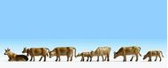 Noch 36722 - Vaches brunes 1:160