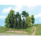 20 sapins et arbres miniatures de forêt, mixtes 7 -18 cm - Heki 1957
