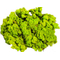 Lichen naturel stabilisé