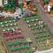 Busch 1213 - Assortiment 16 légumes : Choux, Brocolis, Salades 1:87 - HO