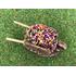 Brouette miniature de fleurs