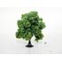 Arbres miniatures à feuilles 7 cm - Jordan 7D