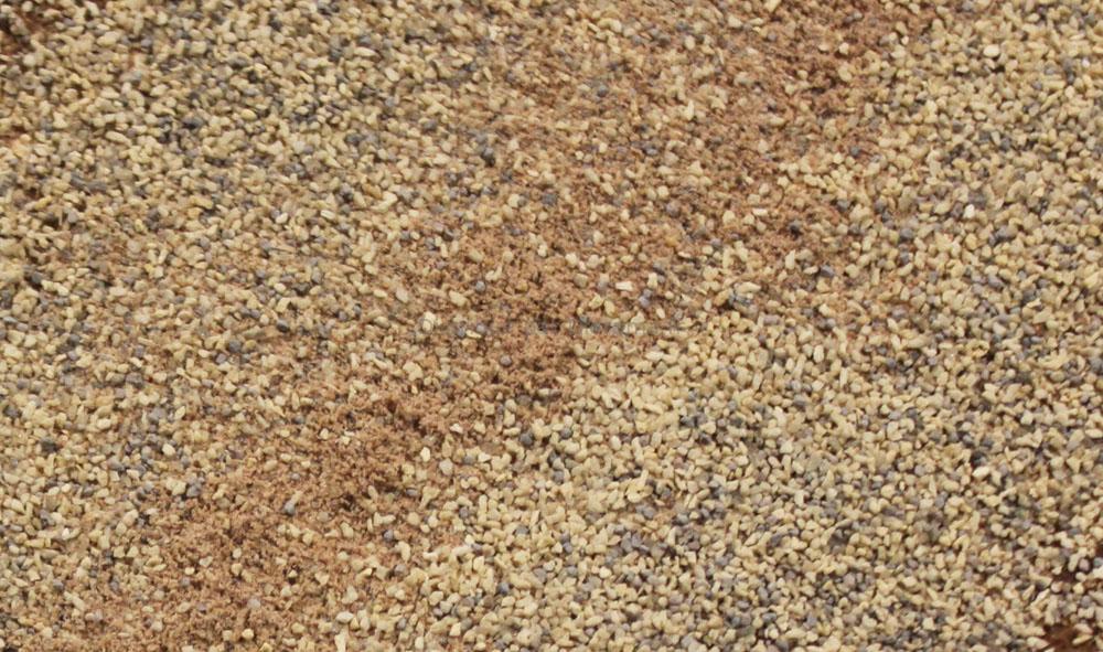 Gravier Chamois Moyen - Woodland C1289
