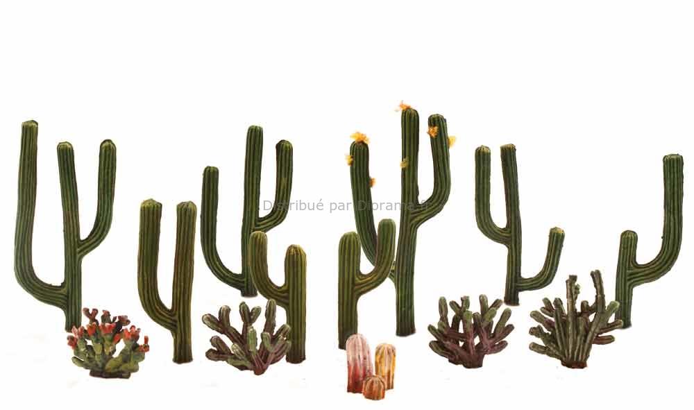 Cactus miniatures  - Woodland TR3600
