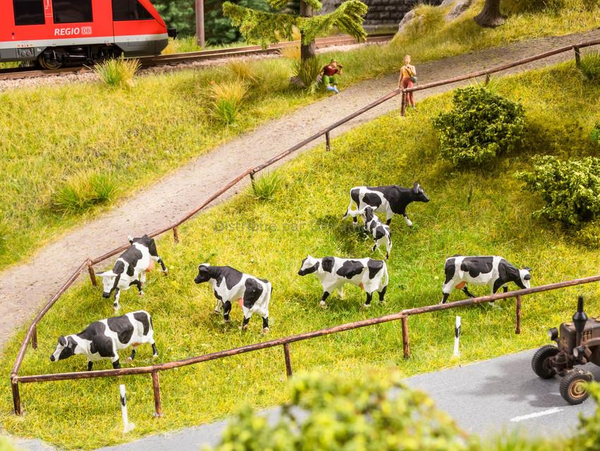Figurines miniatures : Pâturage de vaches - Noch 12851