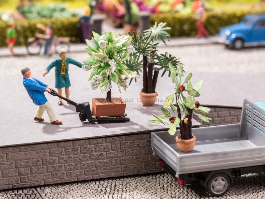 Vagétations miniatures : 3 Plantes méditérranéennes - 1/87 HO - Noch 14023