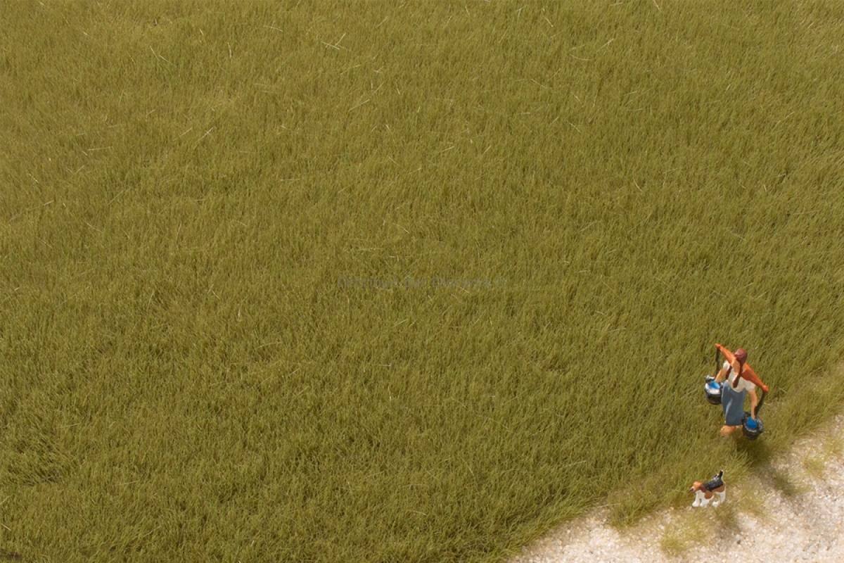 Végétation miniature : Fibres d'herbe vert olive 4,5 mm - Auhagen 75614