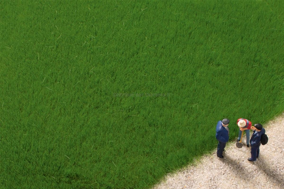 Végétation miniature : Fibres d'herbe vert foncé 4,5 mm - Auhagen 75615