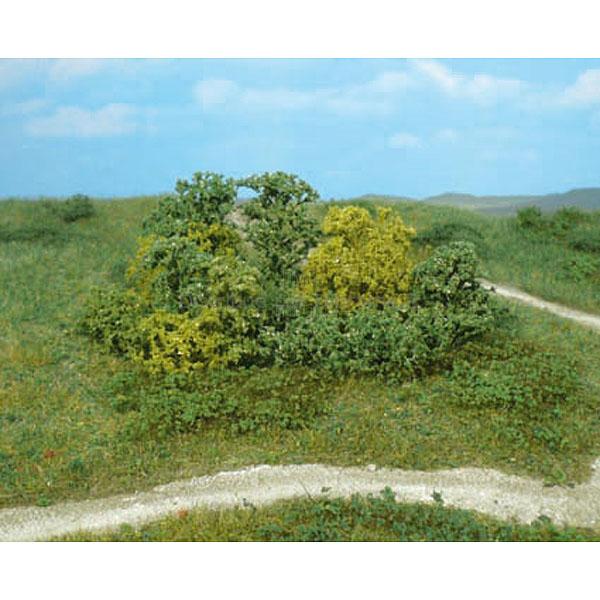 Heki 1646 : 20 buissons naturels
