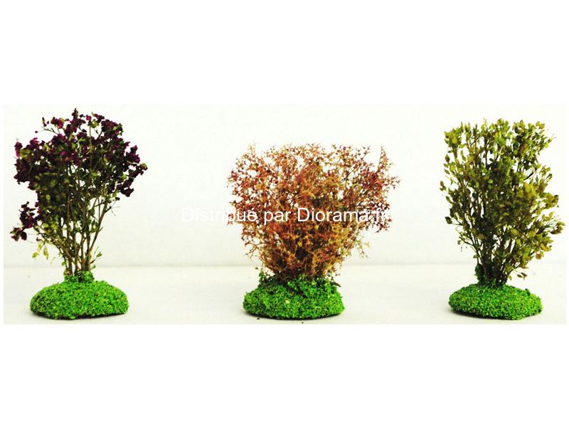 3 buissons feuillus 6 cm
