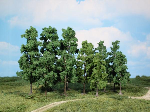 60 Arbres à feuilles caduques 10-13cm